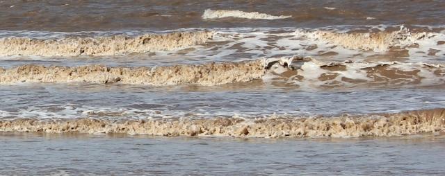 waves like chocolate milk, Ruth walking the coast towards Brean Down