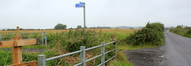 cycle route 33, Bleadon Level,  Ruth Livingstone