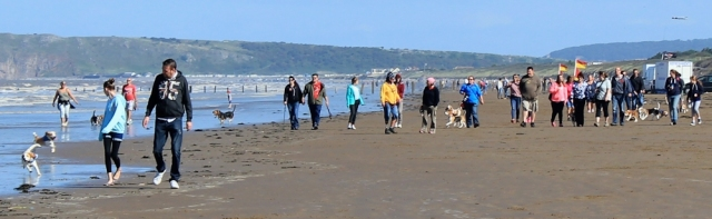 group of walkers with dogs, Ruth walking the coast to Brean Downs