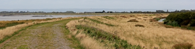 Steart across the River Parrett, Ruth walking the Somerset coast