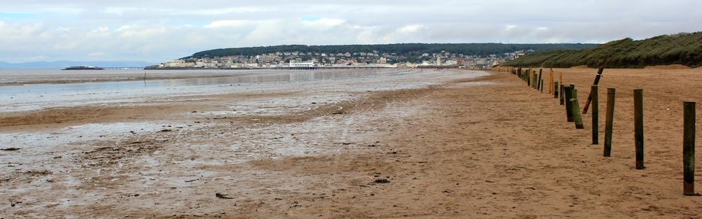 Dog Walking Weston Super Mare Beach