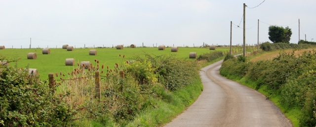 country lanes, Somerset, Ruth walking around the coast
