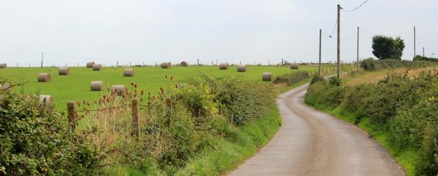country lanes, Somerset, Ruth walking around the coast