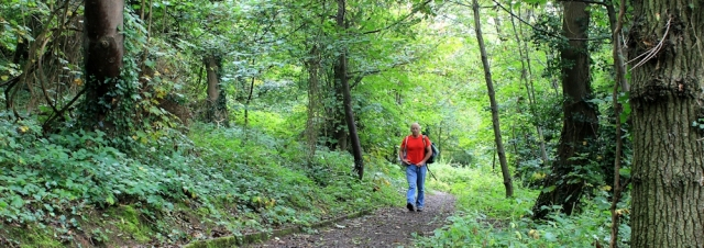 walking through Worlebury Woods, Ruth in Weston super Mare
