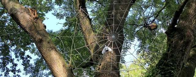 Giant spider, Bulwark Woods, Ruth Livingstone walking in Chepstow