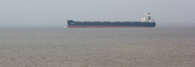 11 container ships, Bristol Channel, Ruth walking the coast