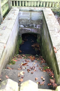St Tewdric's well, Mathern near Chepstow, Ruth Livingstone