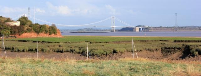 b07 First Severn Bridge, from St Pierre's Pill, Ruth walking the Wales Coast Path