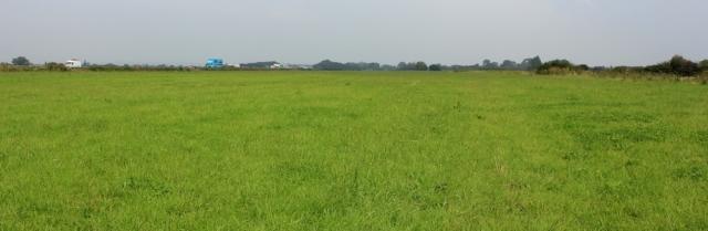 b09 long plod through a featureless field, Ruth walking in Somerset