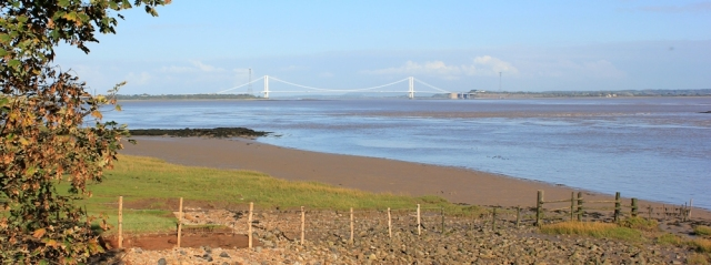 b11 looking back to the Severn Crossing, Ruth walking the Wales Coast Path