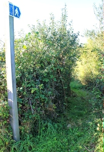 hidden footpath, Ruth walking the Severn Way, Avonmouth