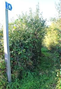 hidden footpath, Ruth walking the Severn Way, Avonmouth
