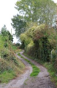 more of Offa's Dyke Way, Ruth walking