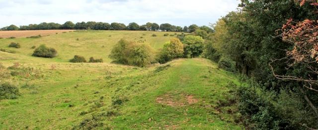 b17 Offa's Dyke through fields, Ruth walking