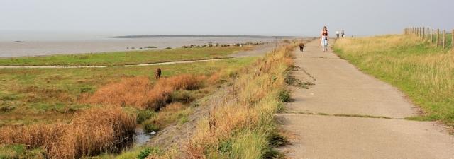 b18 sea walk, Gullhouse Point, Clevedon, Ruth walking in north Somerset