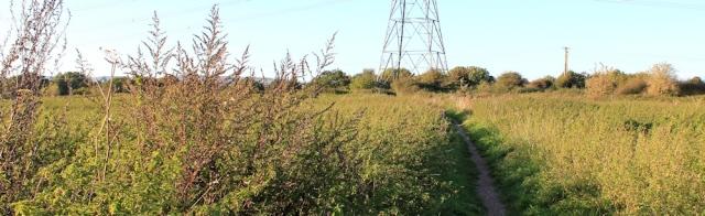 b21 pylon walking, Ruth near Caldicot, Wales Coast Path