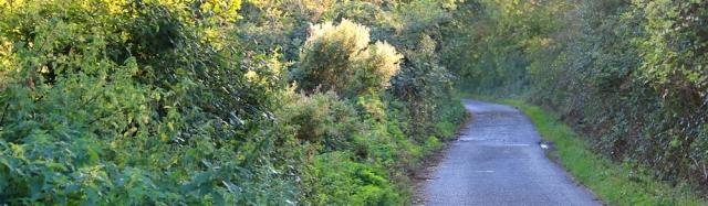 b22 endless track, Ruth walking on Rogiet Moor, Wales Coast Path
