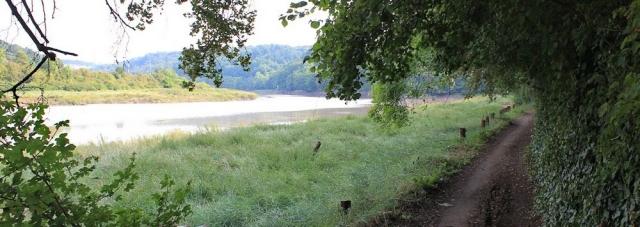 c01 The River Avon Trail, Ruth's coastal walk