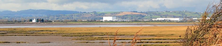 header, view from Newport Wetlands, Ruth Livingstone