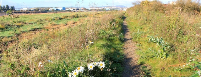 River Usk, Wales Coast Path, Ruth walking in Newport