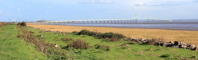 estuary bank and view of Severn Crossing, Ruth on Wales Coast Path