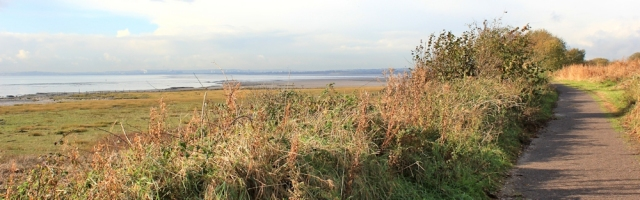 Ruth on Wales Coast Path, Newport Wetlands, river bank