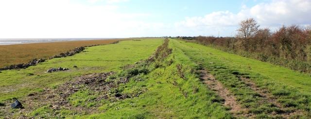 Wales Coast Path along Roggiett Moor Reen, Ruth's coastal walk