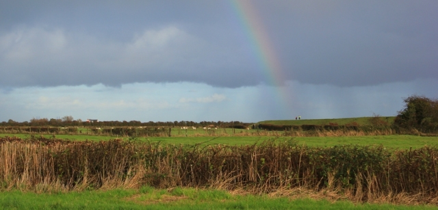 rainbow on river bank, Ruth walking the Wales Coast Path, Goldcliff