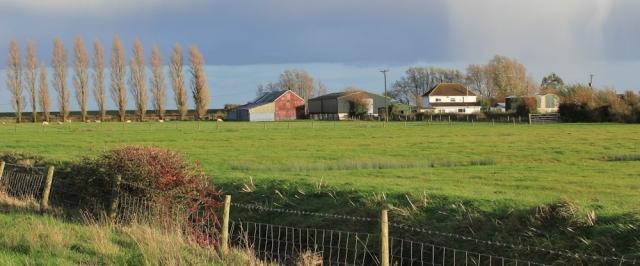 walking past Elm Tree Farm, Gold Cliff, Ruth walking the Wales Coast Path