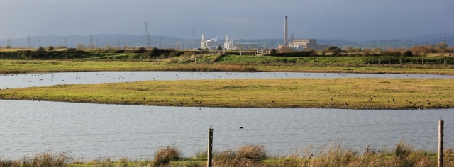 bird hide, Goldcliff, with Newport Power Station behind, Ruth on the Wales Coast Path