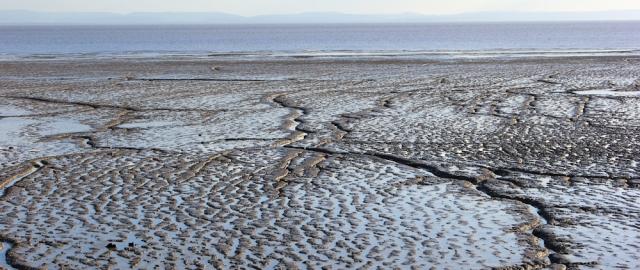 mud on banks of Severn, Ruth's coastal walk