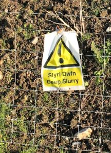 deep slurry warning, Ruth on Wales Coast Path