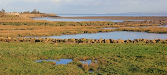 evening light on Severn Estuary, Ruth on the Wales Coast Path, Peterstone Wentlooge