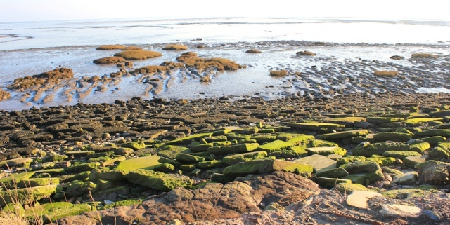 07 shoreline, Ruth walking the Wales Coast Path near Cardiff