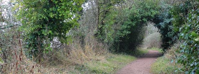 b07 through bushes to Lavernock, Ruth on Wales Coast Path