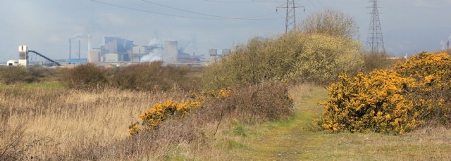 15 Talbot Steel Works, seen from the Wales Coast Path, Ruth