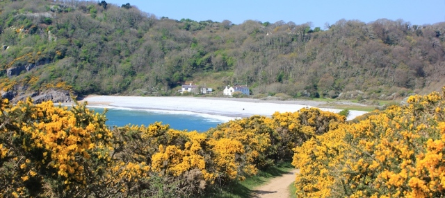 coastal path into Pwlldu Bay, Ruth Livingstone in Gower
