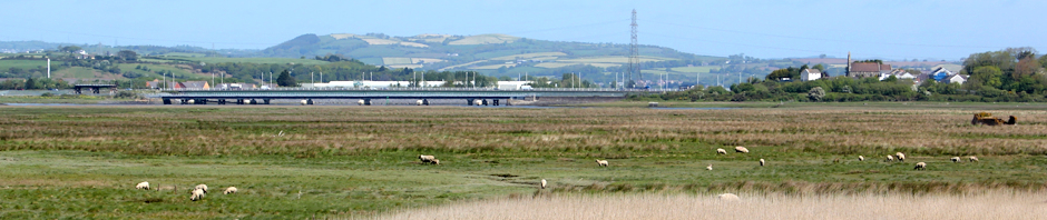Loughor Bridge, Ruth Livingstone