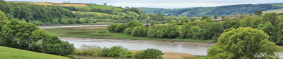 header, River Towy, Ruth Livingstone