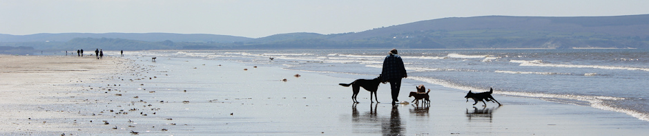 header, Ruth Livingstone on Pembrey beach