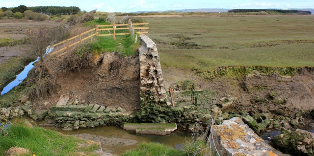 05 breached causeway, Cwm Ivy Marsh