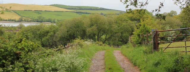 06 country road between Ferryside and Carmarthen, Ruth hiking in Wales