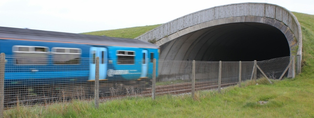 06 train through tunnel, Ruth walking near Llanelli