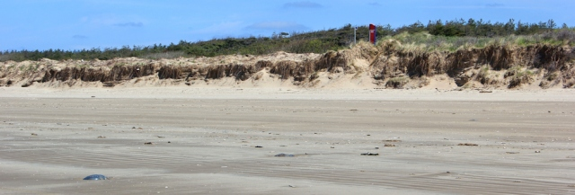 08 Wales Coast Path, Pembrey, Ruth Livingstone walking the coast