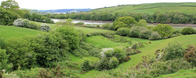 15 rolling fields, Ruth walking along the Wales Coast Path, River Towy