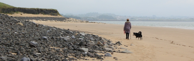 16 dog chasing sand, Ruth walking near Burry, Wales