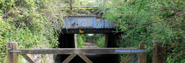 18 bridge under railway track, duck, Ruth on Wales Coast Path