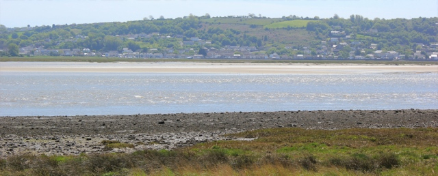view of Pen-clawdd over estuary, Ruth in Llanelli