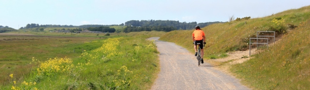 more dunes, cycle track through Pembrey Burrows, Ruth walking the Welsh coast