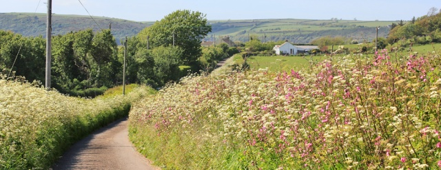 a11 quiet road to Ferryside, Ruth walking the Wales coast